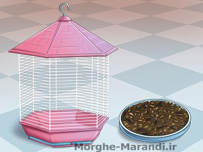 غذای پرنده خود را خارج از قفس قرار ندهید