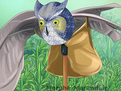 پرنده های مصنوعی یا مترسکهایی شبیه پرنده های شکاری در اطراف نصب کنید